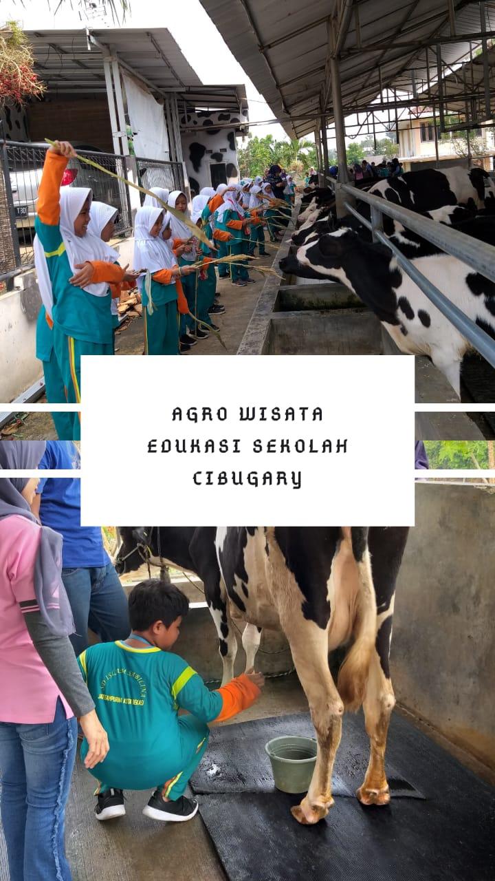 Cibugary Cibubur Garden Dairy